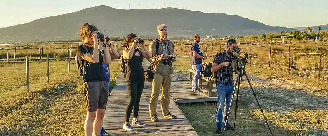 Observatorio Turístico